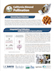 CA Almond Pollination Factsheet