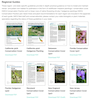 Regional Pollinator Conservation Guides