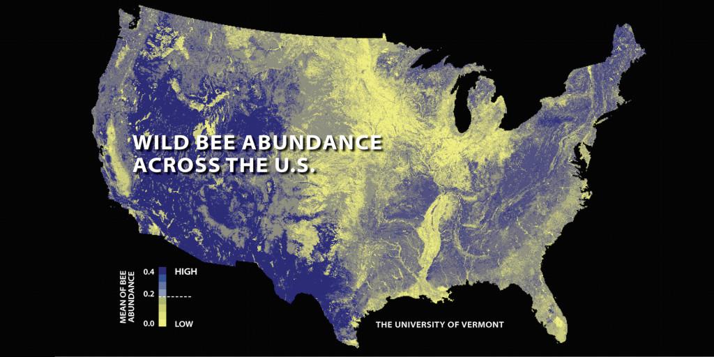 Map of U.S. wild bee abundance