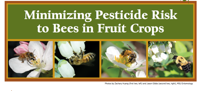 New MSU Extension Bulletin: Minimizing Pesticide Risk to Bees in Fruit Crops